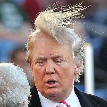 donald-trump-hair4