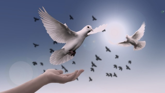 A dove coming to rest on an outstretched hand against a background of blue sky and doves in flight.