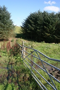 A gate, typical of a gate to a field found in Great Britain.