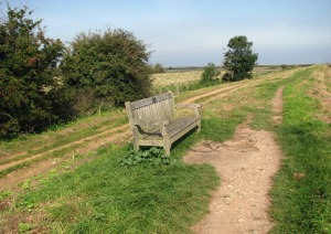 A seat on the Norfolk coastal path.